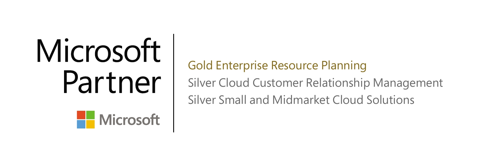 Microsoft Partner - Gold Enterprise Resource Planning
